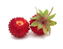 Wild strawberries isolated on white background Royalty Free Stock Photo