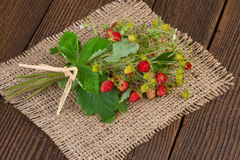 Wild strawberries on jute background Stock Photography