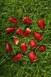 Wild strawberries over the green grass Royalty Free Stock Photo