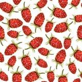 Wild strawberries pattern seamless Stock Photography