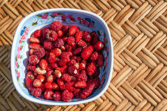 Wild strawberries and raspberries Stock Photo