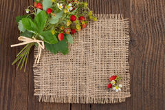 Wild strawberries on rustic background Stock Images