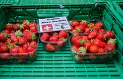 Wild strawberries for sale at local street market. Lausanne. Switzerland. (Fraises des bois mean - Wild strawberries). Wild strawberries for sale at local street royalty free stock photography