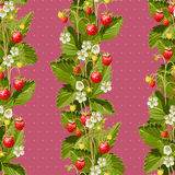 Wild strawberries seamless background Royalty Free Stock Photo
