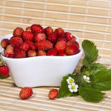 Wild strawberries in a small bowl Stock Photo