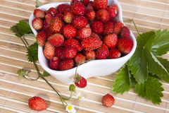 Wild strawberries in a small bowl Royalty Free Stock Photography