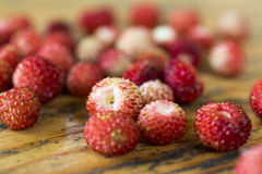 Wild strawberries on the table Royalty Free Stock Photography