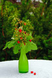 Wild strawberries in a vase. Some strawberries in av vase, standing on a table in a garden royalty free stock photo