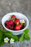 Wild strawberries on wooden background Stock Photography