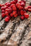Wild strawberries on wooden background Royalty Free Stock Photos