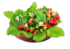 Wild strawberries in wooden bowl on white Stock Images