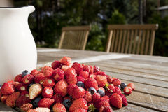 Wild strawberry and bilberry with jag Royalty Free Stock Images