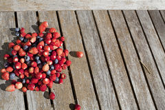 Wild strawberry and bilberry on a table Royalty Free Stock Images