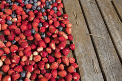 Wild strawberry and bilberry  on a table Royalty Free Stock Photos