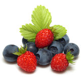 Wild strawberry and blueberry Royalty Free Stock Photography
