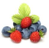 Wild strawberry and blueberry macro. Isolated on white Stock Photos