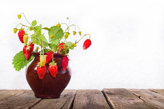 Wild strawberry branches in a ceramic pot on a wooden table. Close up, copyspace on the right, light background stock image