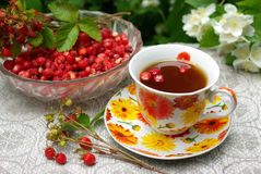 Wild strawberry and a cap of tea Royalty Free Stock Image