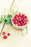 Wild strawberry in glass jar Royalty Free Stock Photography