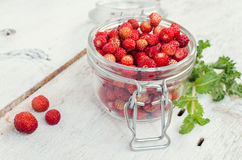 Wild strawberry in glass jar. With green mint leaves on white rustic wooden background. Sweet berry Fragaria for summer dessert. Healthy snack. Selective focus stock photo