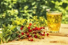Bunch of wild strawberries a glass of juice on wooden boards on a background of green plants tinted yellow. Wild strawberry glass juice wooden boards blackboard Royalty Free Stock Photography