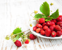 Wild Strawberry In A Plate Stock Photo