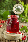 Wild strawberry jam Royalty Free Stock Photos