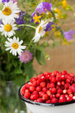 Wild strawberry. And meadow flowers Stock Image