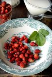 Wild strawberry with milk Stock Images