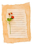 Wild strawberry on an old paper Stock Photo