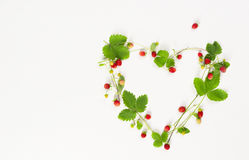 Wild strawberry set Stock Image