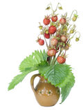 Wild strawberry in small ceramic jug Royalty Free Stock Images