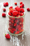 Wild strawberry. Wild strawberries in a glass jar with some berries on background, shallow depth of field Stock Image