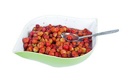Wild strawberry in sugar Royalty Free Stock Images
