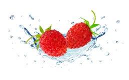 Wild Strawberry and water splash Stock Photos
