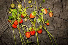 Wild strawberry on a wooden background Royalty Free Stock Photography