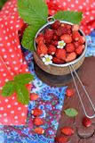 Wild strawberry in a wooden bowl Stock Photography