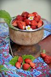 Wild strawberry in a wooden bowl Stock Images