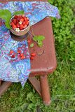 Wild strawberry in a wooden bowl Stock Photos