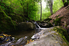 Wild stream Brodenbach next to Mosel River Royalty Free Stock Photos