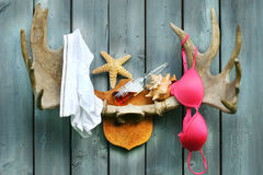 Wild summer cottage weekend Stock Image