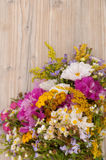 Wild Summer Flowers Royalty Free Stock Photo