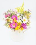Wild Summer Flowers Stock Photo