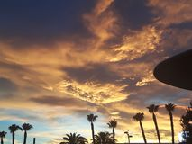 Wild sunset clouds with palm trees. And alien spacecraft Stock Photo