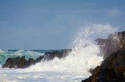 Wild Surf. Hitting rocks on the shore Stock Image