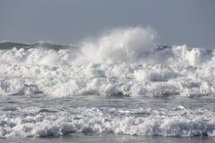 Wild Surf 2 Stock Photography