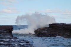 Wild Surf Stock Photos