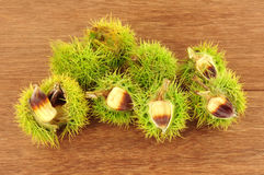 Wild Sweet Chestnuts Royalty Free Stock Photos