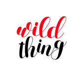 Wild thing. Brush lettering. Stock Image