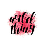 Wild thing. Brush lettering. Royalty Free Stock Photography